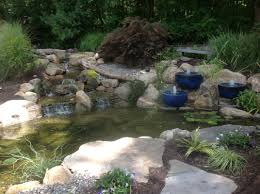 Aquascape Nj Pond Contractor Morris Hunterdon Somerset Nj A Frog U0027s