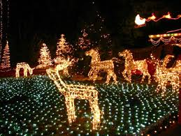 ideas lawn lights outdoor yard decorating