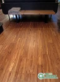 walnut flooring alternative mocha fossilized eucalyptus by