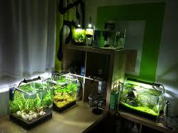 Aquascape Tank Charming Creative Fish Tanks 131 Creative Diy Fish Tanks Best Fish