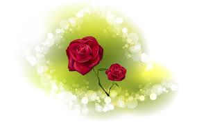 rose wallpaper 4680 valentine u0027s day festival