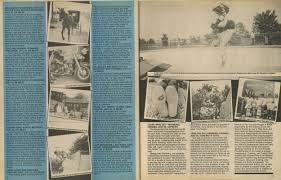 thrasher magazine october 1984