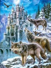 wolf animal 3d effect wallpaper for home decoration buy 3d