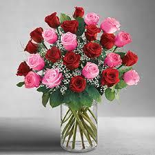 2 dozen roses ultimate elegance 2 dozen stem pink and roses