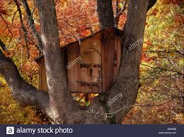 rustic wood tree house in tree with autumn foliage missouri