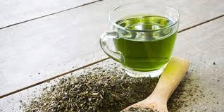 Teh Hijau 7 alasan untuk minum secangkir teh hijau sebelum tidur merdeka