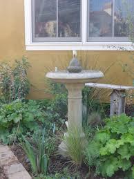 san diego native plant society san diego u2013 california native plant society blog