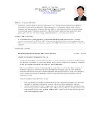 exles of professional summary for resume resume exles templates free sle resume summary exles