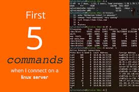 first 5 commands when i connect on a linux server linux com