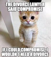 Lawyer Cat Meme - meme creator the divorce lawyer said compromise if i could