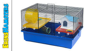 Hamster Cages Cheap Small Hamster Cages And Why They U0027re Bad Youtube
