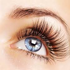 Professional Eyelash Extension Professional Eyelash Extensions Great Eyelashes For Weeks On End