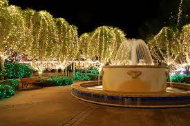 Light Up Ocala Christmas In Mount Dora