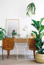 Desk Plant Bright Home Office Area With Fiddle Leaf Fig Plant Sfgirlbybay
