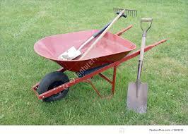 tools u0026 supplies wheelbarrow with garden tools stock picture
