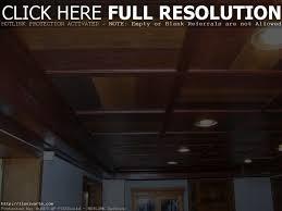 Backyard Best Ideas About Drop Ceiling Basement Dropped