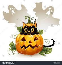 halloween cat background black cat halloween pumpkin ghost background stock vector