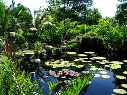 Most Beautiful Gardens In The World The Most Beautiful Gardens In The World Part Ii World Love Flowers