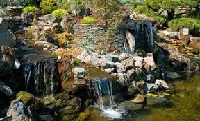 Average Cost Of Backyard Landscaping Garden Design Garden Design With What Is The Average Cost Of