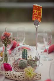 best 25 cactus terrarium ideas on pinterest succulent terrarium