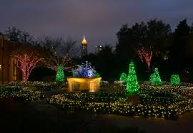 9 botanical gardens that are more beautiful at night botanical