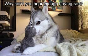 Doge Sex Meme - punchline album on imgur