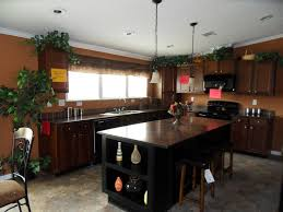 Double Wide Mobile Homes Interior Pictures 254 Best Mobile Home Images On Pinterest Mobile Homes