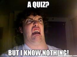Quiz Meme - a quiz but i know nothing meme oh no meme 43007 memeshappen