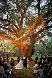 Outside Weddings Best 25 Outside Wedding Ideas On Pinterest Rustic Outside