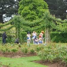 queen mary u0027s garden botanical gardens inner circle regent u0027s