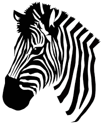 zebra vector zebra pinterest silhouettes colour book and