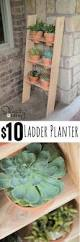 Diy Ladder Shelf Shelves Tutorials by Diy Ladder Shelf Shelves Tutorials And Woodworking
