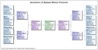 bowtie chart sample family tree charts