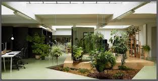giardini interni casa giardino in casa si può