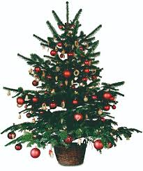 which christmas tree local buzz magazine