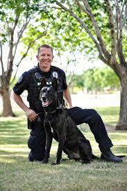 best 25 gilbert police department ideas on pinterest bloodhound