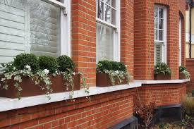 Plants For Winter Window Boxes - winter window boxes u2014 contemporary garden design london uk