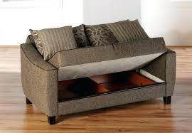 Sofa Canada Loveseat Sleeper Sofa Canada With Air Mattress Amazon 21842