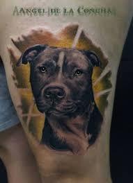 terrier tattoo pitbull portrait