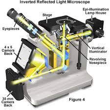 what is a light microscope used for molecular expressions microscopy primer anatomy of the microscope