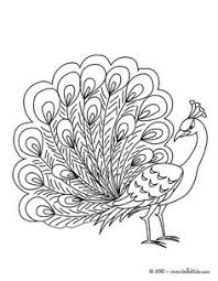 peacock coloring page art pinterest peacocks embroidery