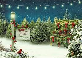 best 25 christmas tree lots ideas on pinterest mini christmas