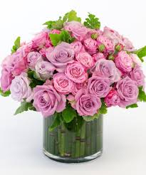 Lavender Roses Lavender Rose Garden Voted Best Florist In San Diego San Diego