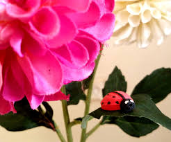 how to make a paper lady bug using paper art quilling