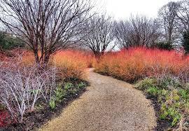 Anglesey Abbey Winter Garden - winter garden anglesey abbey pinterest winter garden and gardens