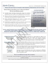 Senior Executive Resume Sample by Coo Resume Chief Operating Officer Resume Samples Mary