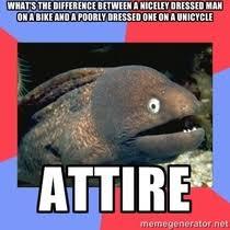 Fact Frog Meme - small fact frog meme guy