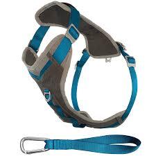 amazon com kurgo journey tm dog running harness dog walking