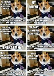 Lawyer Dog Memes - 22 best funny legal related pictures images on pinterest ha ha