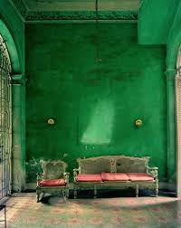 cool green products sustainable interior design materials moss walls the trend that